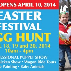 Easter Festival at Springridge Farm