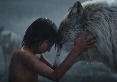 Movie in the Forest: The Jungle Book