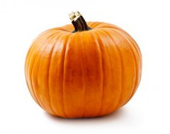PUMPKIN PATCHES – FALL ACTIVITES FOR FAMILIES
