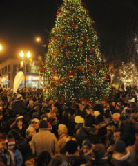 Downtown Oakville Tree Lighting Ceremony