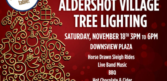 Aldershot BIA Village Tree Lighting